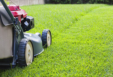 lawn mower mowing lawn pinellas county