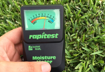 rapitest moisture meter to determine moisture levels in the grass