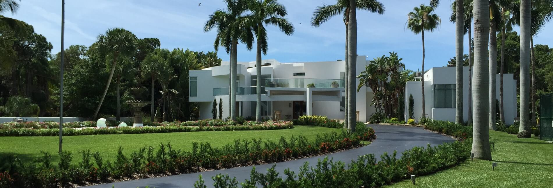 big white house with a palm trees and heathy fertilized lawn in st petesrburg fl